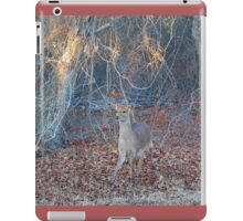 Young Prince, Sika Deer, Assateague Island iPad Case/Skin