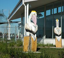 Wooden Pelicans by hpix