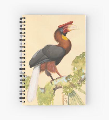 Majestic Hornbill with Huge Beak Spiral Notebook