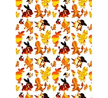 Fire Type Starters Pattern Photographic Print