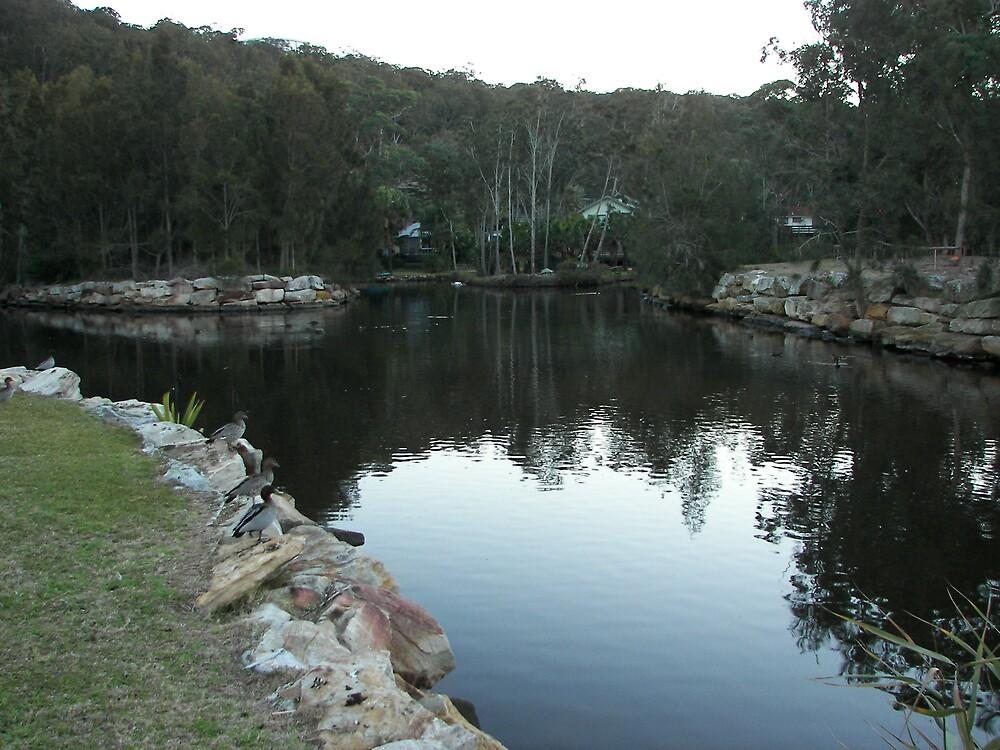 Ellalong Creek by westray