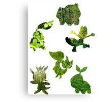 Grass Type Starters Canvas Print
