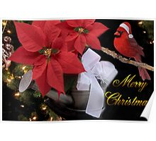 ✰。POINSETTIA AND CARDINAL CHRISTMAS PICTURE/CARD✰。 Poster