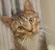 Tabby Kitten Digital Painting by PeggyFranzs