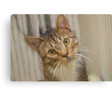 Tabby Kitten Digital Painting Canvas Print