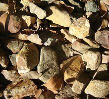 Rocks by JoeyJ