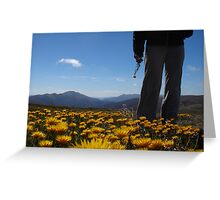 Feathertop Flower Greeting Card