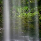 Waterfall Detail by John Barratt