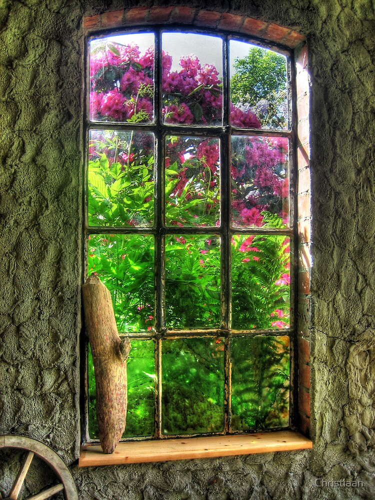 Window to Another World by Christiaan