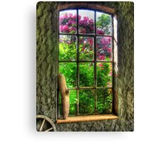 Window to Another World Canvas Print