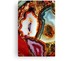 Agate, the Dreams of Earth Canvas Print