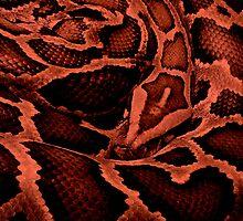 Red Snake by Gavin