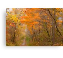 Pathway To Autumn_1 Canvas Print