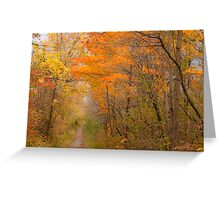 Pathway To Autumn_1 Greeting Card