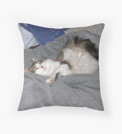 Keito, the Boneless cat Throw Pillow