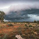 scene of destruction by Tony Middleton