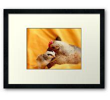 Oh!! How I Adore Motherhood!! - Hen And Chick - NZ Framed Print