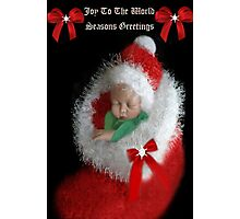 ☃ ☃ JOY TOO THE WORLD GREETING CARD VERSION TWO WITH TEXT PICTURE AND OR CARD☃ ☃ Photographic Print