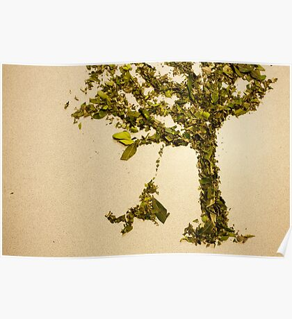 Herb tree Poster