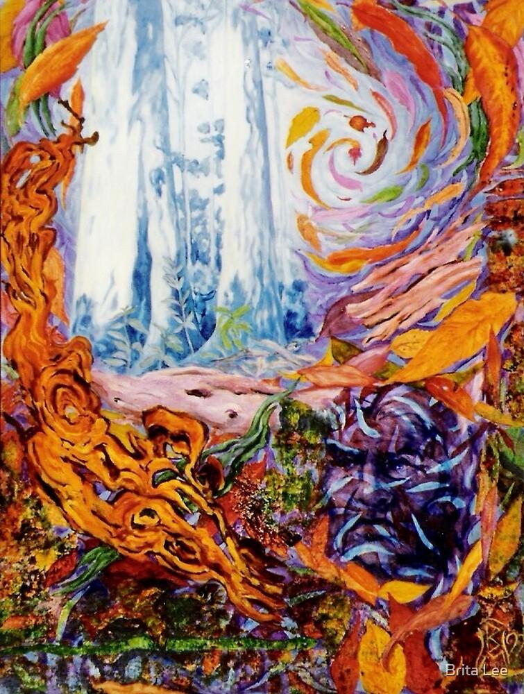 Spirit of the Karri Forest by Brita Lee