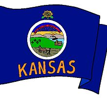 Kansas State Flag by kwg2200