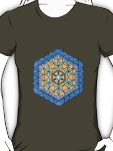 Mandala :  Life's Fruit   T-Shirt
