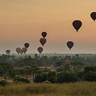 Hot Air Balloons at Sunrise by Silvia Tomarchio