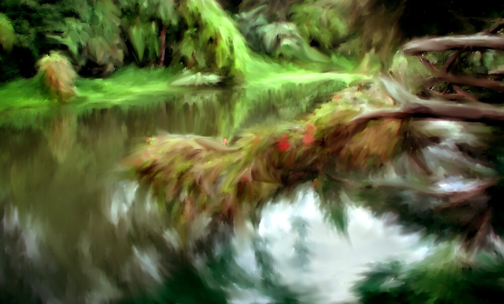 Nerang River by Cliff Vestergaard