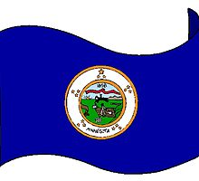 Minnesota State Flag by kwg2200