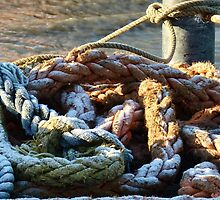 Icy  Harbour Rope by lynn carter