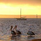 Sunrise with mates by bombamermaid