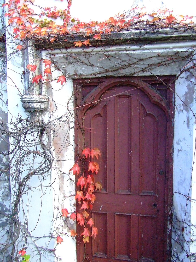 Red Vine Door by Samara  Lee
