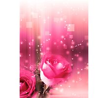 Roses in a Magic Light Photographic Print
