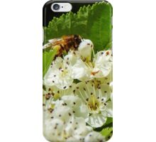 Sweetly scented iPhone Case/Skin