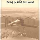 Aces of the Allied Air Services (WW I) 2 by A. Hermann