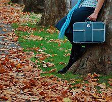 Baggage by Fiona  Braendler