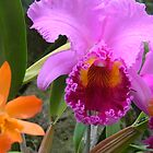 Tropical Orchid by bombamermaid