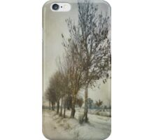 Slow Road to Winter iPhone Case/Skin