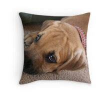 Maximus Throw Pillow