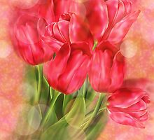 Tulips on Bokeh Background by AnnArtshock