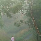 Misty Morning Walk,Waurn Pond Creek by Joe Mortelliti