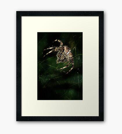 Furry hunter Framed Print