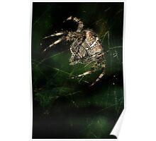 Furry hunter Poster