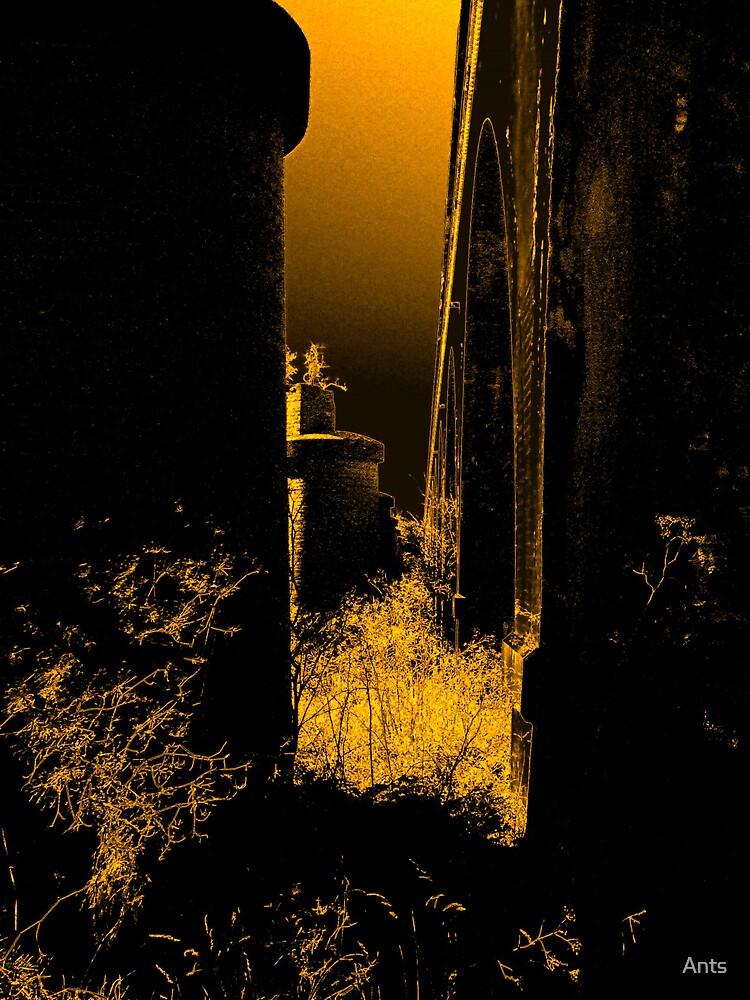 under the bridge 2 by Ants