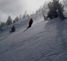 heavenly skiing by Hawk