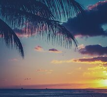 Tropical Sunset In Hawaii by mrdoomits