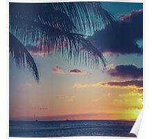 Tropical Sunset In Hawaii Poster