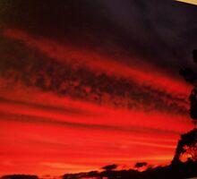 Blood Orange Sky by Morris