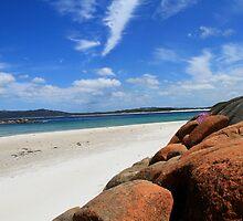 Beach Life by Brian Hadwin