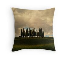 Rainy day in Toskany Throw Pillow